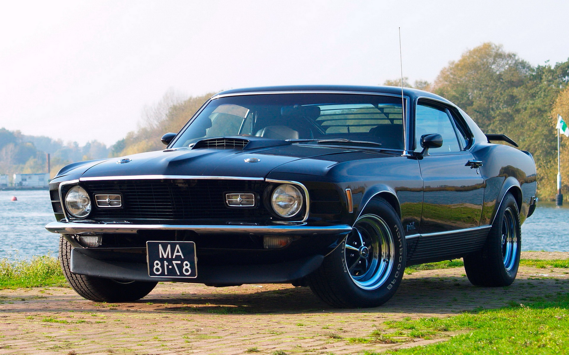 Ford Mustang 37