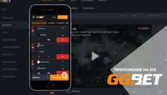 Для любителей игр и ставок на ходу достаточно скачать приложение GGBet на андроид или айфон.