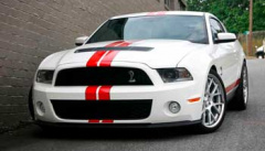 Ford Mustang 43