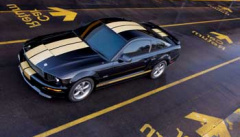 Ford Mustang 110
